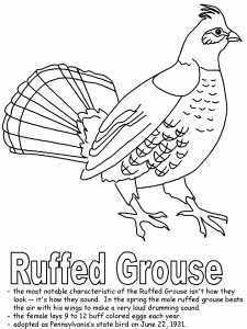Ruffed-grouse coloring page